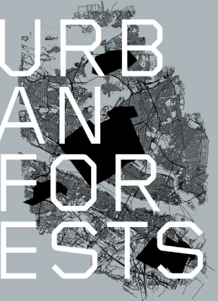 urban forest due x quattro
